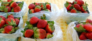 Winter strawberries from STAR Farmer's Market