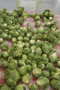 Fresh Brussels Sprouts (Barton Creek Market)